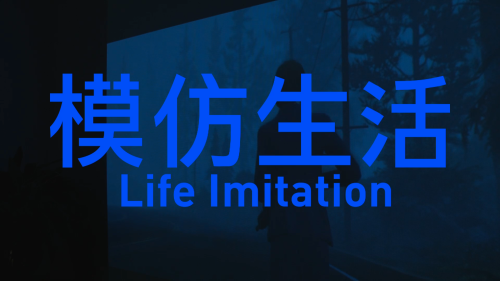 LIFEIMITATION2