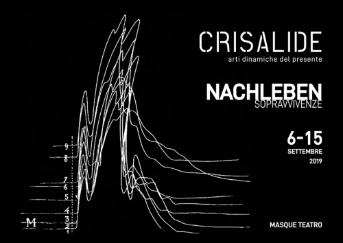 image from www.crisalidefestival.eu